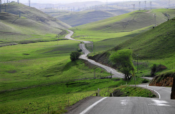 Livermore Wall Art - Photograph - Country Road Through Green Hills by Mitch Diamond