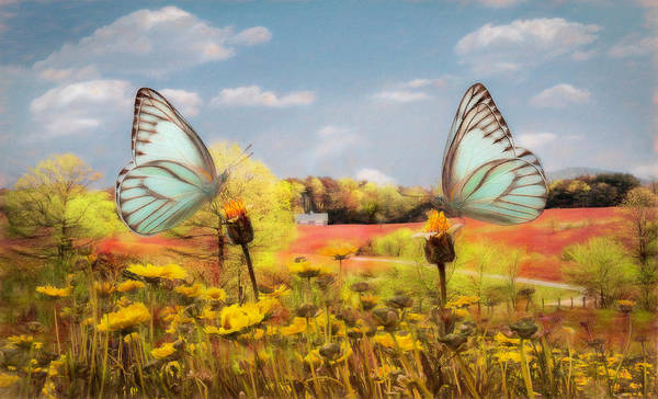 Photograph - Country Roads In Butterflies Watercolor Painting by Debra and Dave Vanderlaan