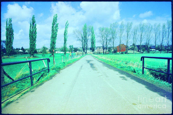 Wall Art - Photograph - Countryside Road by Guido Koppes