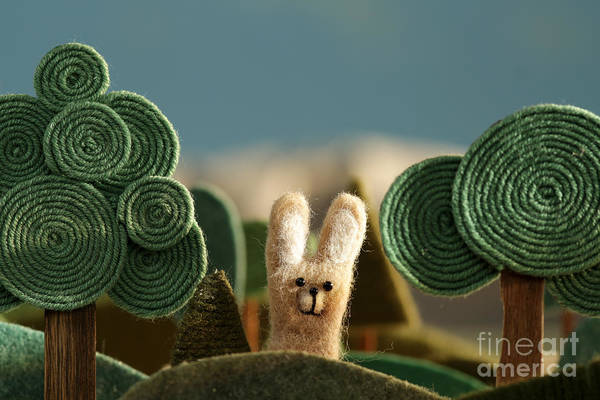 Stylized Wall Art - Photograph - Countryside With Hare - Stylized Nature by Kreus