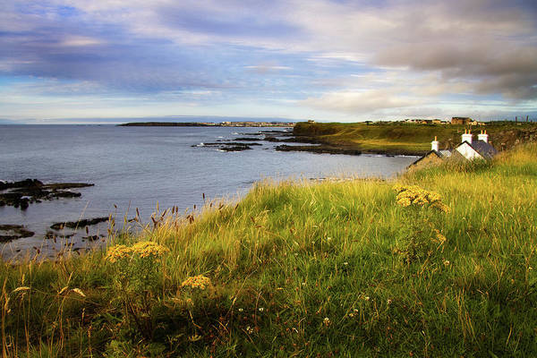 In The Grass Photograph - County Antrim Coast by The Edge Digital Photography