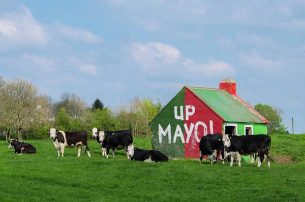 Wall Art - Photograph - County Mayo Ireland - Up Mayo by Bill Cannon