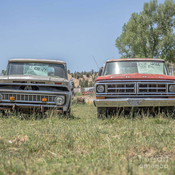 Wall Art - Photograph - Couple Of Old Vintage Pickup Trucks by Edward Fielding