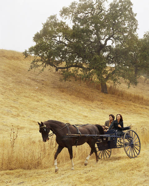 Heterosexual Couple Photograph - Couple Riding In Horse-drawn Carriage by Lisa Romerein