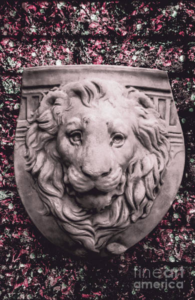 Wall Art - Photograph - Courage Crest by Jorgo Photography - Wall Art Gallery