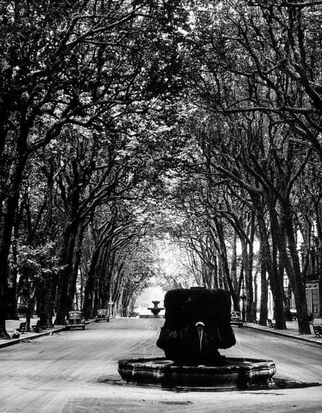Cours Photograph - Cours Mirabeau, One Of The Main Avenues by Gjon Mili