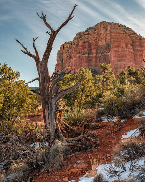 Wall Art - Photograph - Courthouse Butte by Joseph Smith