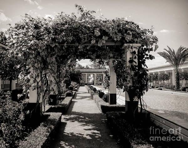 J Paul Getty Photograph - Courtyard Landscape Bw Getty Villa  by Chuck Kuhn