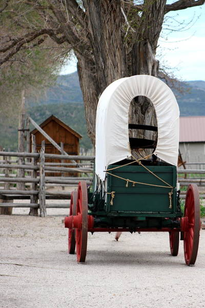 Photograph - Covered Wagon At Cove Fort Utah by Colleen Cornelius