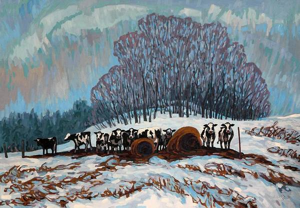Painting - Covey Of Cattle by Phil Chadwick