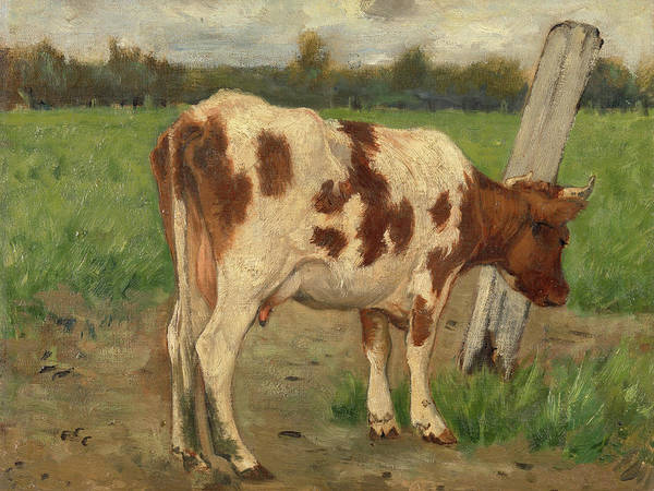 Rural Wall Art - Painting - Cow, 1903 by Geo Poggenbeek