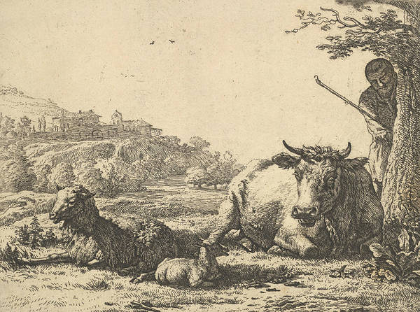 Wall Art - Relief - Cow, Adult Sheep, And Young Sheep Lying In The Grass by Karel Dujardin