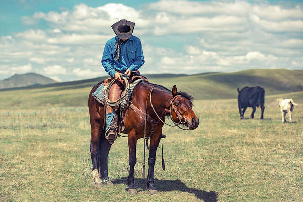 Photograph - Cowboy Prose by Todd Klassy