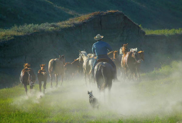 Ranch Photograph - Cowboy With Horses And Dog On The Ranch by Keren Su