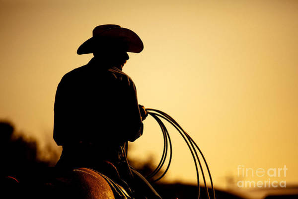 Wall Art - Photograph - Cowboy With Lasso Silhouette At by Sascha Burkard