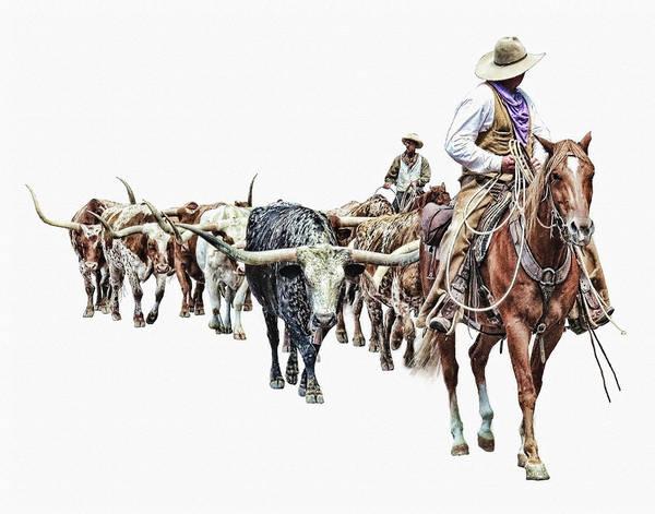 Wall Art - Photograph - Cowboys And Longhorns by David and Carol Kelly