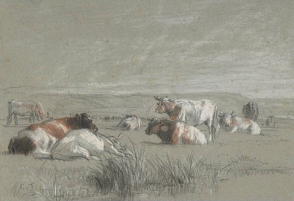 Drawing - Cows In A Landscape by Constant Troyon
