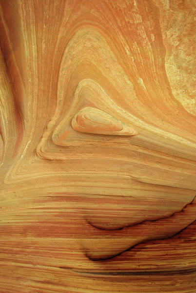 Vermilion Cliffs Wall Art - Photograph - Coyote Buttes North by Gary Koutsoubis