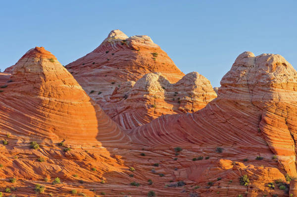 Vermilion Cliffs National Monument Wall Art - Photograph - Coyote Buttes The Wave by Adventure photo