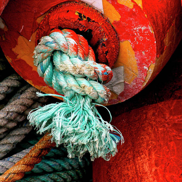 Float Wall Art - Photograph - Crab Pot Buoy Detail by Carol Leigh