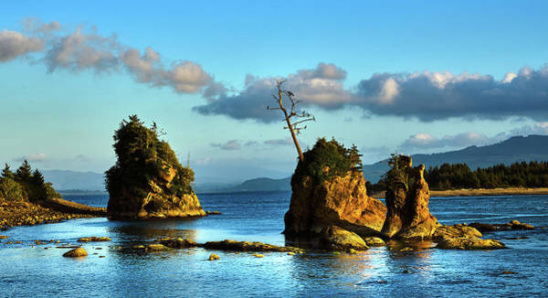 Photograph - Crab Rock, Bar View Oregon, Oregon Coast by TL Mair