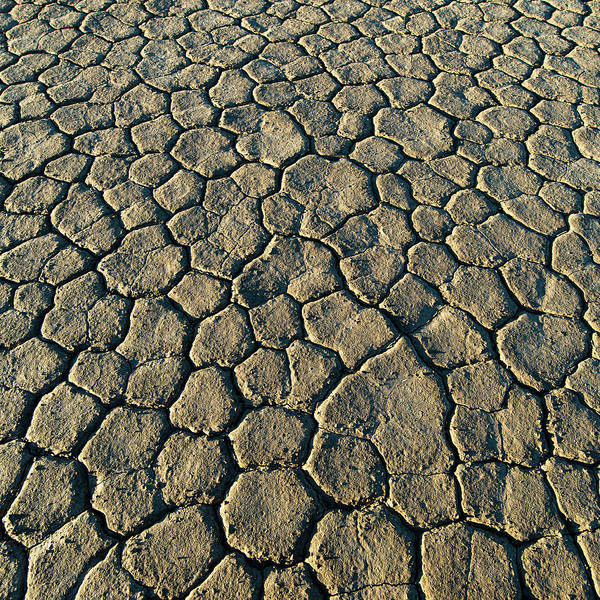 Photograph - Cracked Earth I by William Dickman