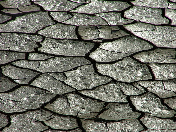 Cracked Photograph - Cracks by Katie Lasalle-lowery
