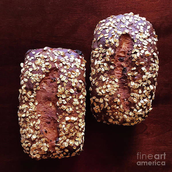 Photograph - Cranberry Oat Sourdough by Amy E Fraser