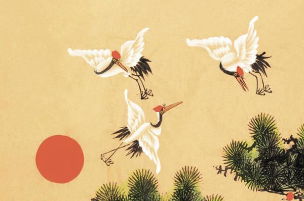 Calligraphy Digital Art - Crane by Vii-photo