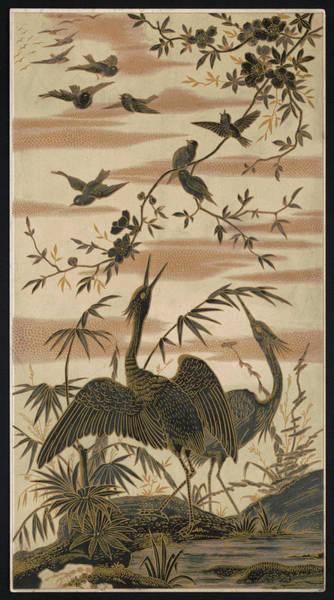 Twitcher Wall Art - Photograph - Cranes And Birds At Pond 2  1880 by Daniel Hagerman