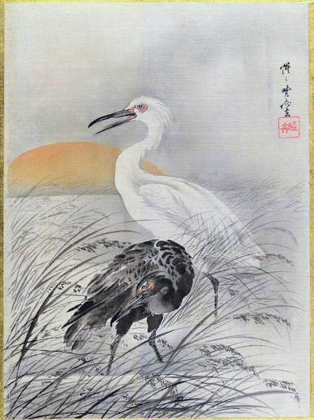 Cranes In Marsh - Digital Remastered Edition Art Print