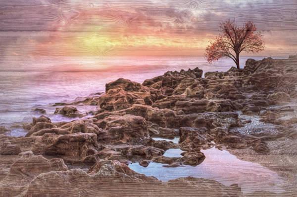 Wall Art - Photograph - Creation Light by Debra and Dave Vanderlaan
