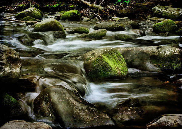 Photograph - Creek Cades Cove by Evie Carrier