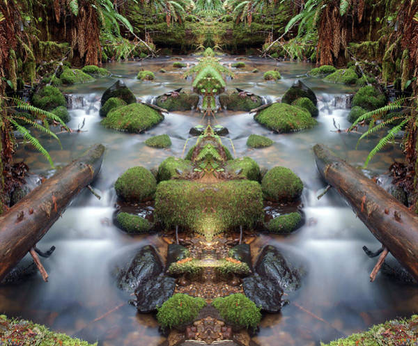 Photograph - Creek Diamonds #1n by Ben Upham III