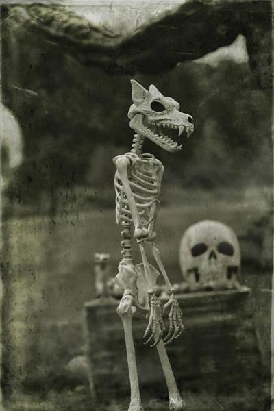 Wall Art - Photograph - Creepy Vintage Werewolf by Carrie Ann Grippo-Pike