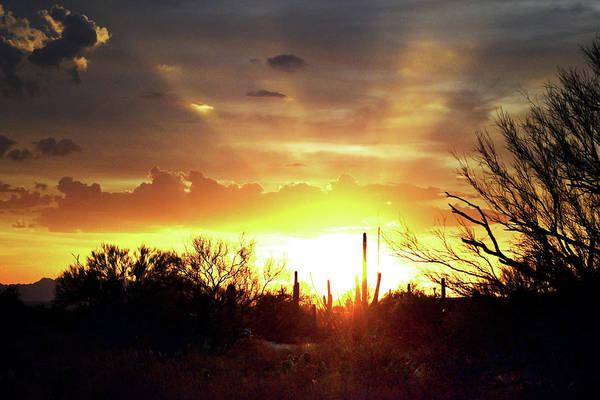 Photograph - Crepuscular Sunset Rays Above Tucson, Arizona And Saguaro by Chance Kafka