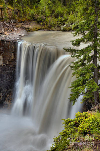 Photograph - Crescent Falls Wooded Portrait by Adam Jewell