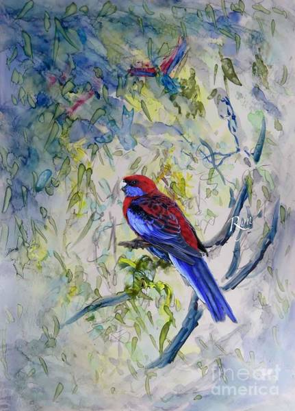 Painting - Crimson Rosella by Ryn Shell