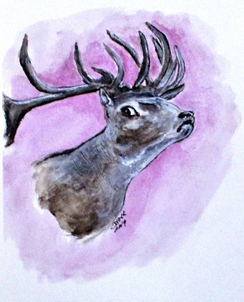 Painting - Croatian Stag by Clyde J Kell