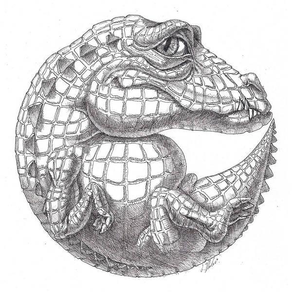 Drawing - Crocodile by Victor Molev