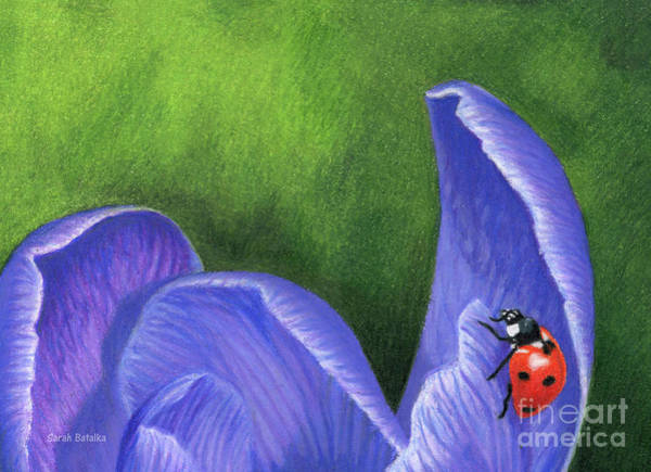 Wall Art - Painting - Crocus And Ladybug Detail by Sarah Batalka