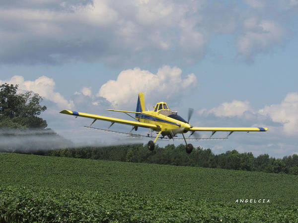 Photograph - Crop Duster In Action by Angelcia Wright