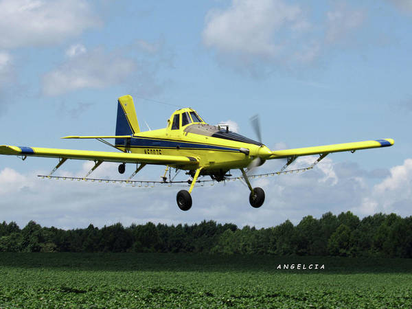Photograph - Crop Duster Take Off by Angelcia Wright