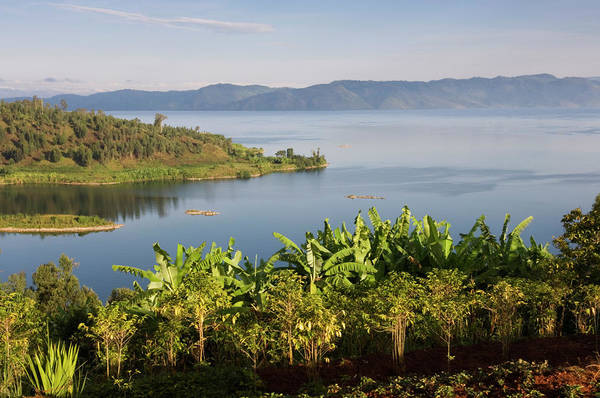 Lakeshore Photograph - Crops Cultivated On Shores Of Lake by Ariadne Van Zandbergen