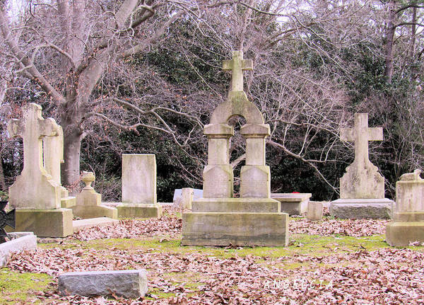 Photograph - Crosses Of Ivy Hill Cemetery by Angelcia Wright