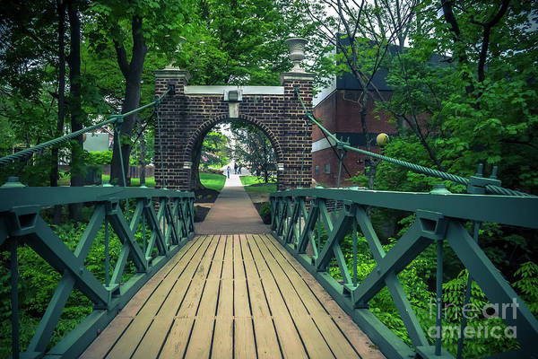 Wall Art - Photograph - Crossing The Kissing Bridge by Colleen Kammerer