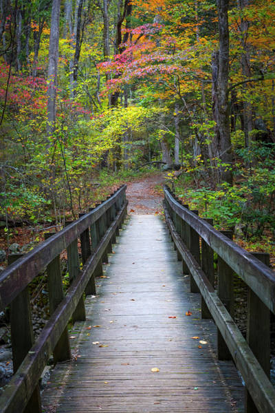 Photograph - Crossing The Stream In Autumn by Debra and Dave Vanderlaan