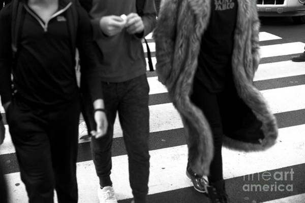 Photograph - Crossings In Fur New York City by John Rizzuto