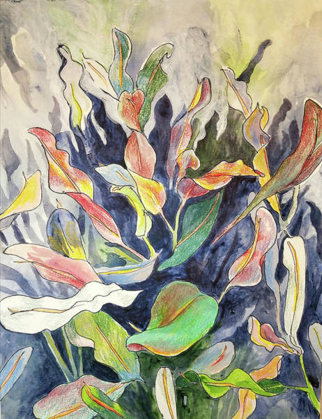 Mixed Media - Croton Plant by Tilly Strauss