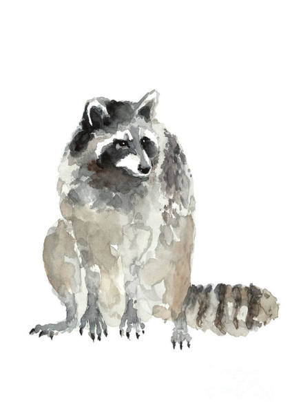 Wall Art - Painting - Crouching Raccoon Watercolor by Joanna Szmerdt
